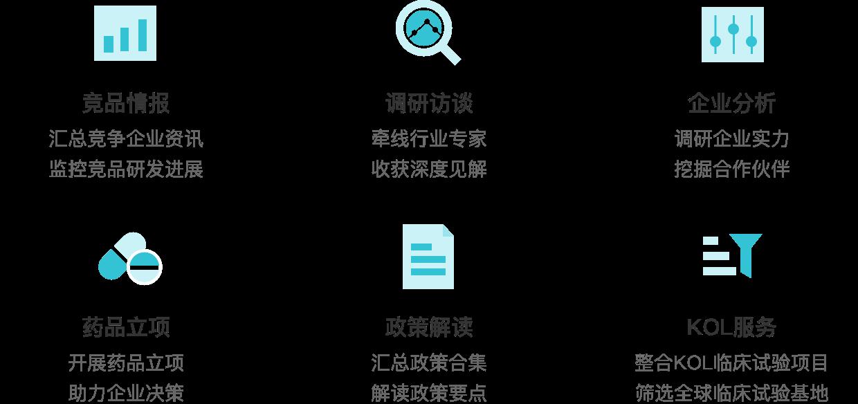 报告服务项目